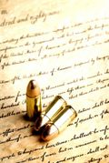 Bullets on Constitution